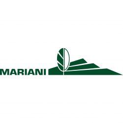 Mariani Landscape