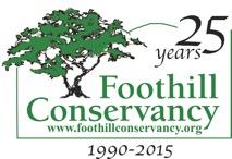 FC 25th logo