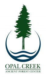 logo-vertical color