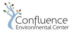 ConfluenceNonProfit(150x344)