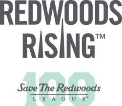 RedwoodsRisingCentennial
