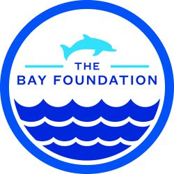 TBF_Logo_CMYK_HighRes