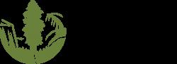 SC Logo_Horiz Web Green