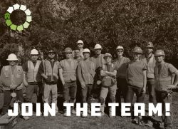 Join the team photo