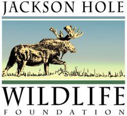 JHWF 2019 logo medium (2)