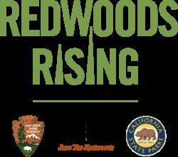 RedwoodsRisingPartnerLockup