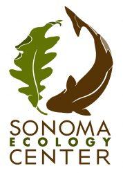 SEC Logo New