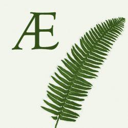 Sword_Fern_Logo (1)