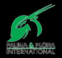 ffi square logo